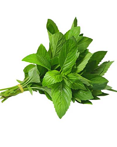 Crushed mint leaves