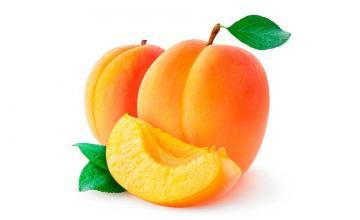 From the genus Prunus