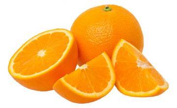 Citrus species