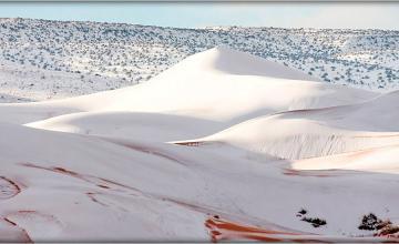 Sahara desert covered with snow
