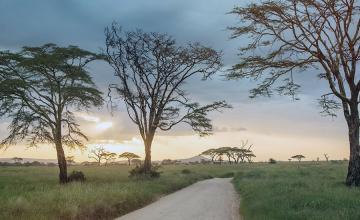 Tanzania An African escapade